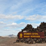 Park Narodowy Monumento Natural Bosques Petrificados dzien2